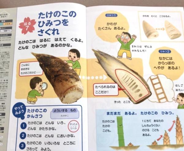 Z会幼児年長4月号の食育体験の効果