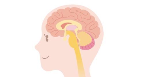 脳科学の子育て本ブログ