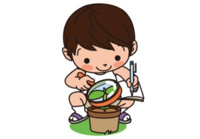 Z会幼児実体験学習の方法