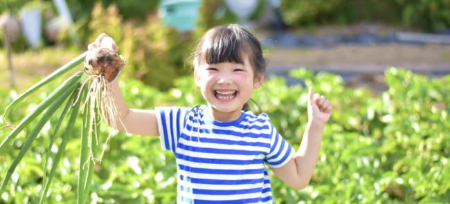 Z会幼児実体験学習の効果